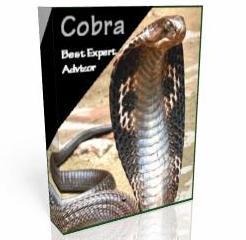 Торговый робот Форекс Cobra 1.1 - Torgoviy-robot-Forex-Cobra