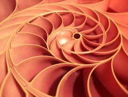 Urovni Fibonachchi v trejdinge 1 Уровни Фибоначчи в трейдинге